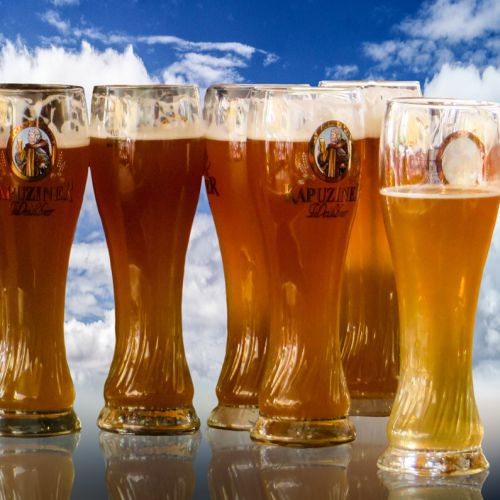 7 Reasons Why Drinking Beer Is Good for Your Health