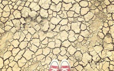 SA water crises nightmare
