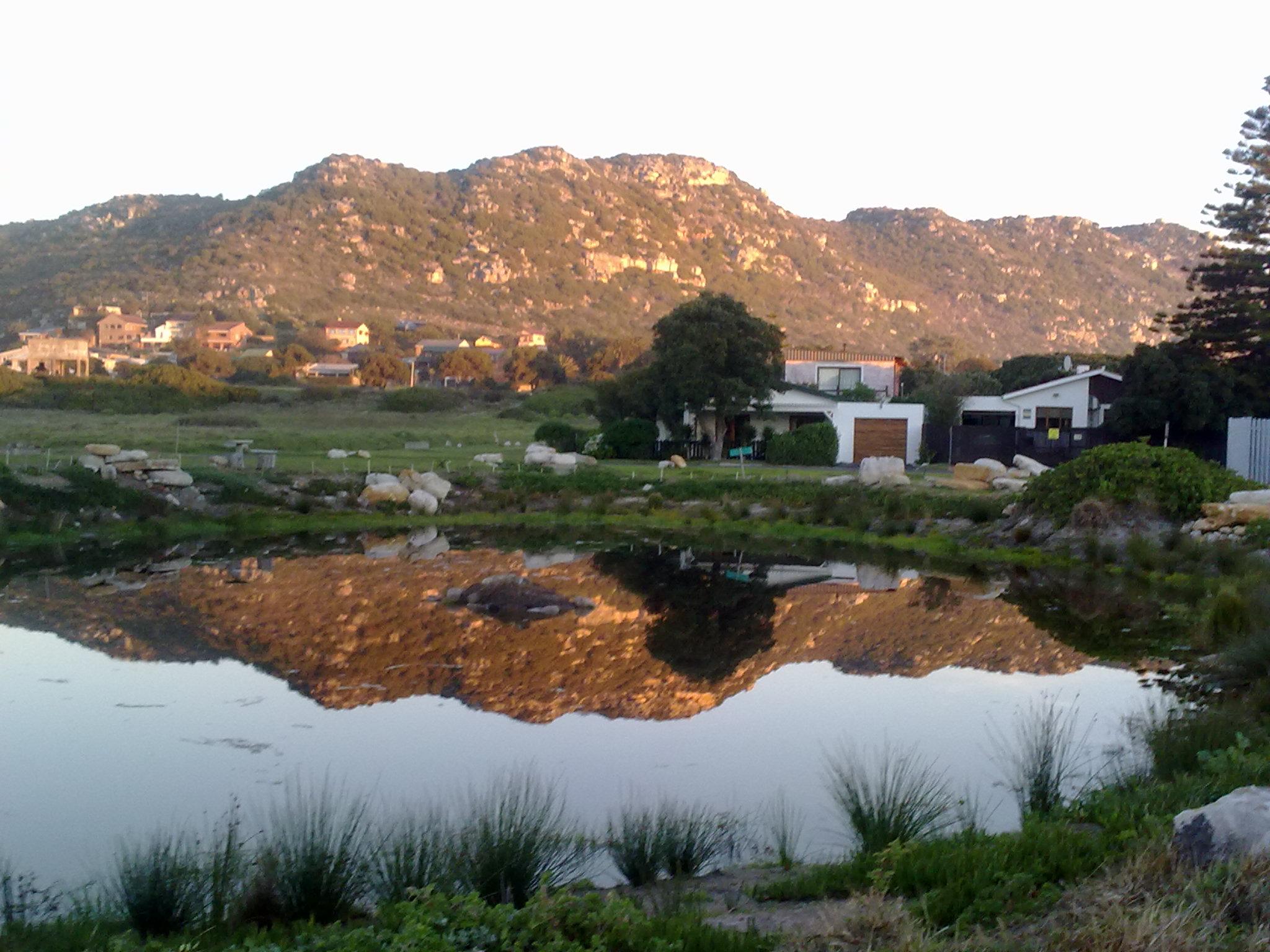 Wetland restored by Kommetjie Coastal Stewards