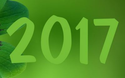 7 Green New Year Resolutions 2017