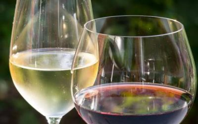 Drinking wine supports conservation