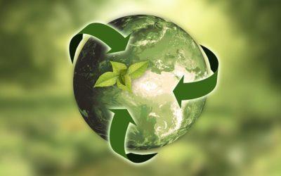 Earth Alive Corridors – Towards 7 Billion Earth Stewards